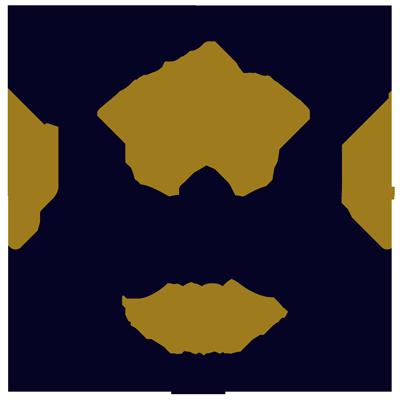 logotipo-senoriodevalei